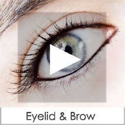 eyelid & brow copy