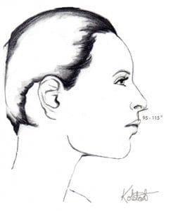 best nasal tip rotation